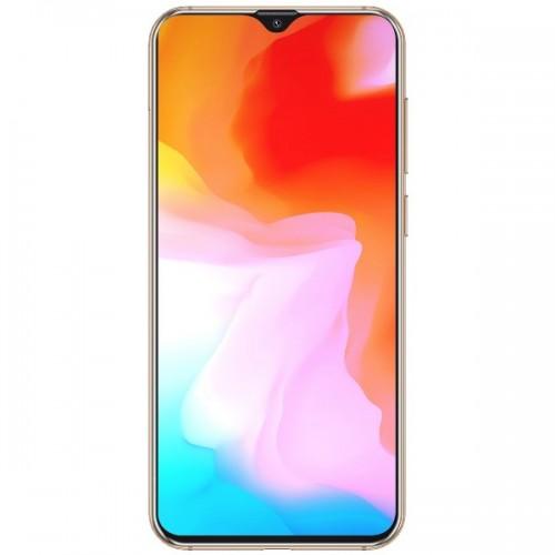 Telefon CUBOT X20, 4G, Helio P23, 6.3 FHD+, 4+64GB, Android 9, Auriu +Husa +Folie - SmartPhone